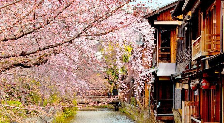 高級 旅館 京都