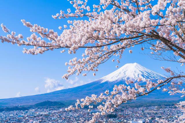 「日本旅遊」的圖片搜尋結果