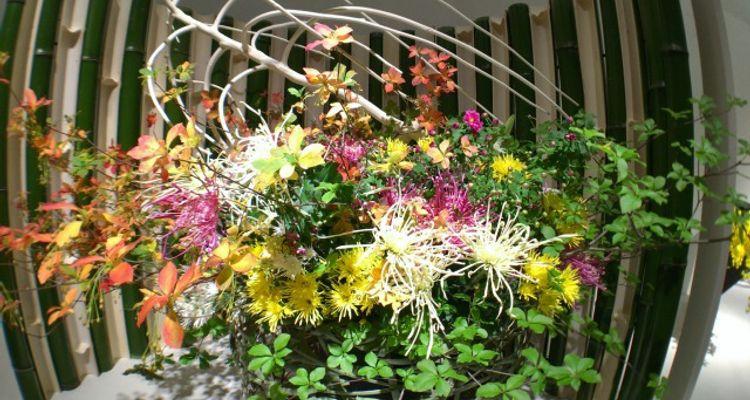 Learn All About Japan S Traditional Flower Arrangement Kadou Tsunagu Japan