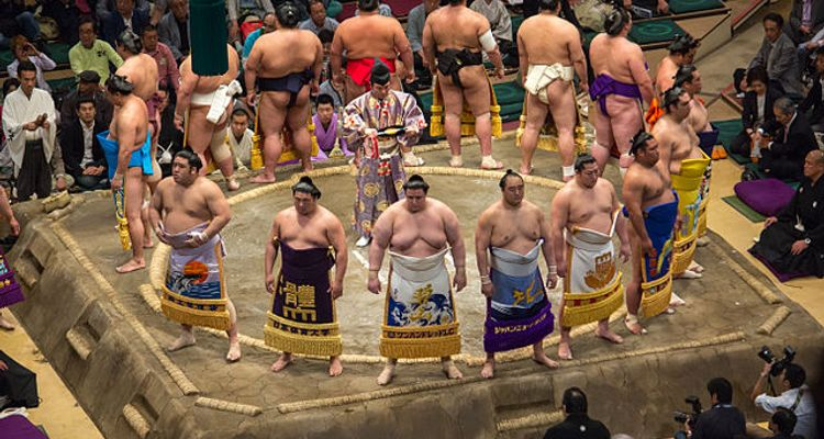 8 Ways to Enjoy the Sumo Experience in Japan | tsunagu Japan