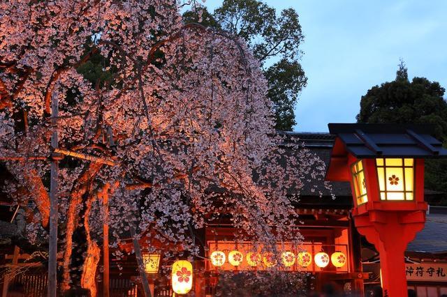 【京都自由行】10選京都必見日本傳統行事・祭典