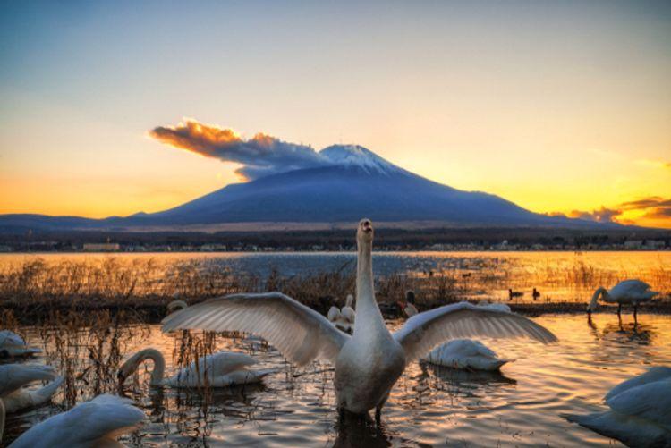hồ Yamanaka tỉnh Yamanashi
