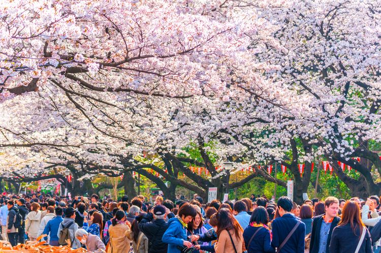 công viên Ueno
