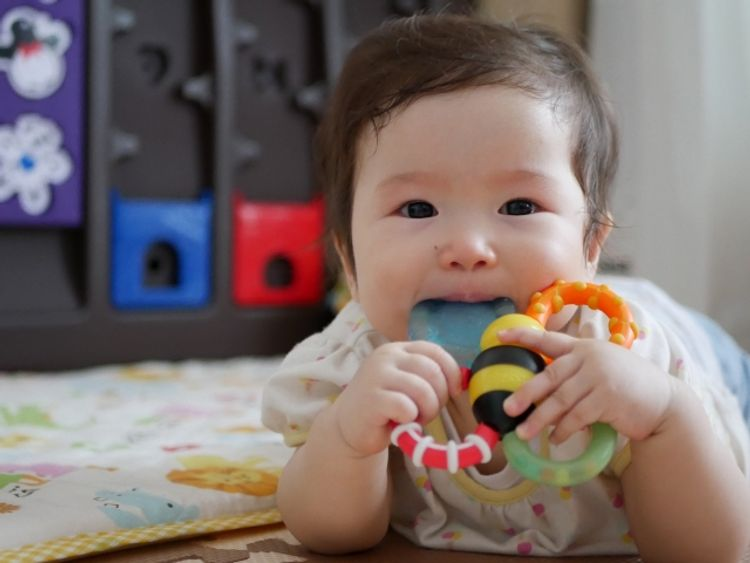 baby gnawing on a toy