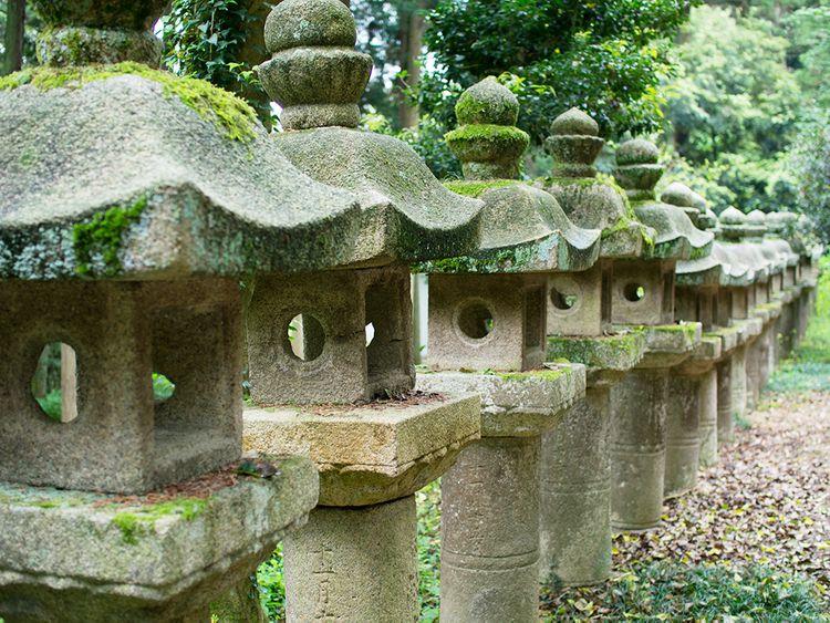 ishidoro (stone lanterns) lined up