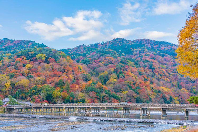 嵐山的紅葉美景