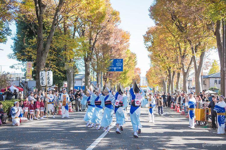 Hachioji Ginkgo Festival
