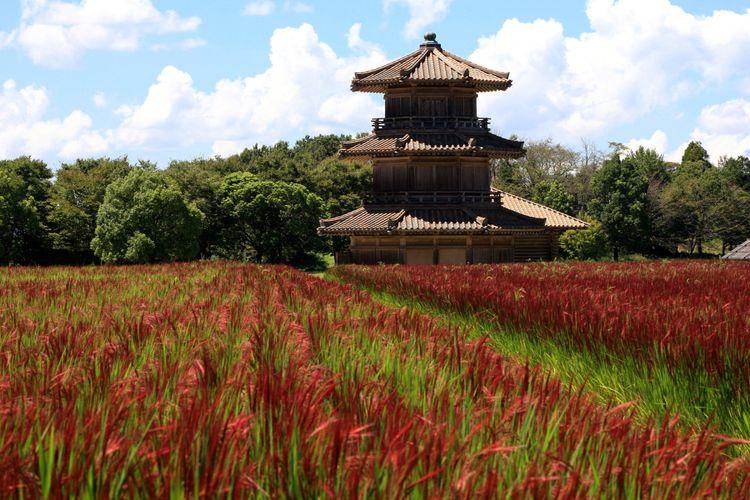 kikuchi castle kumamoto