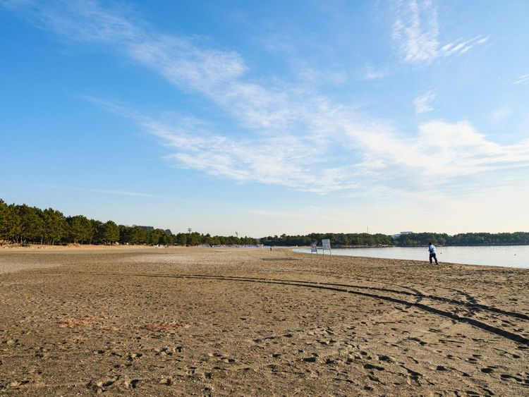 bãi biển gần Công viên Marine