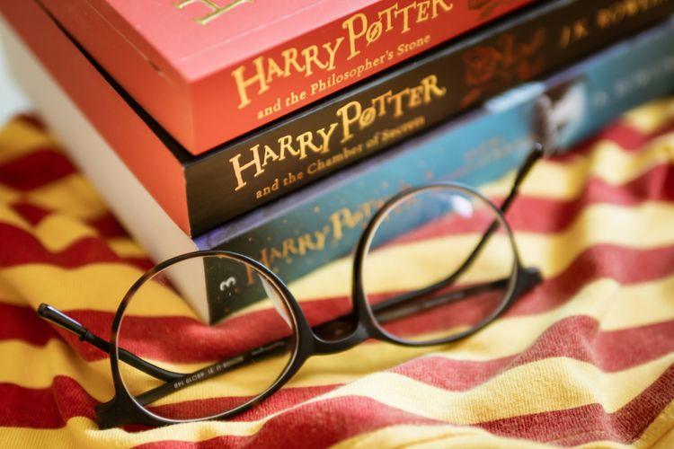 Harry Potter is popular in fan fiction