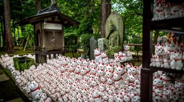 Temple Maneki-Neko