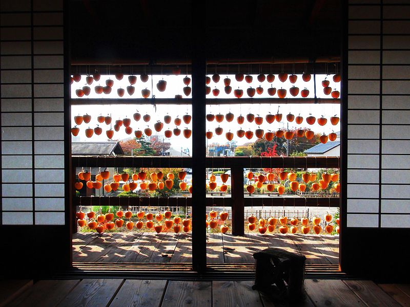 800px-Dry_persimmon_light_and_shadow