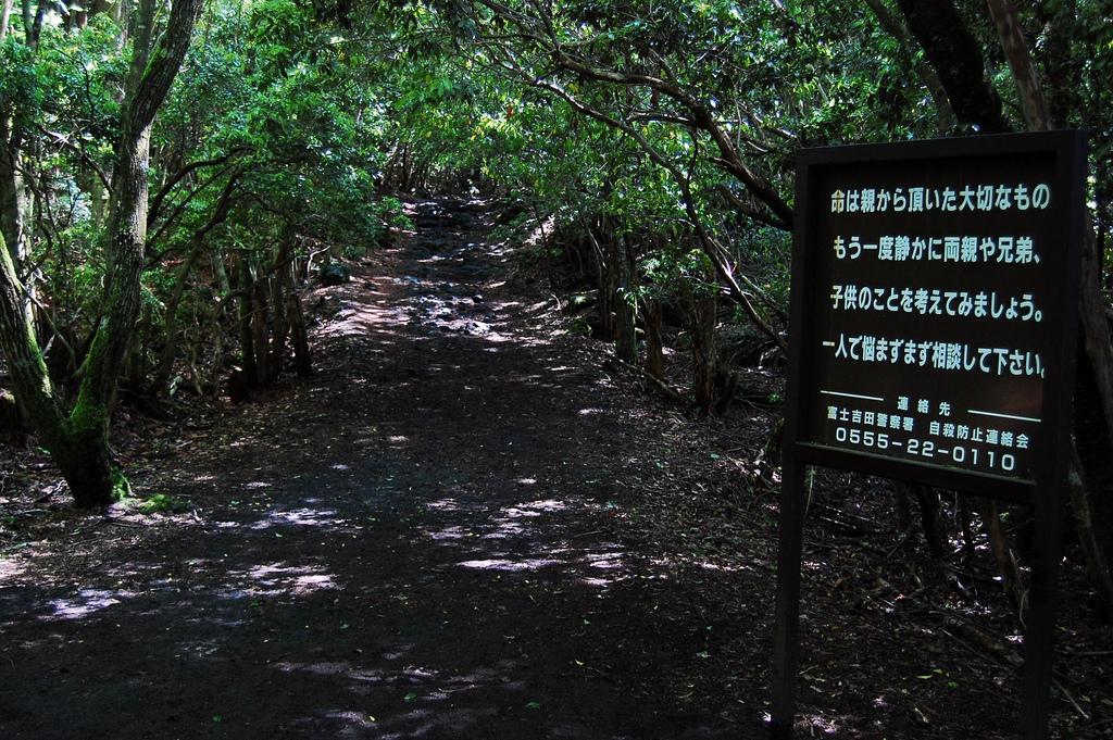 10. Aokigahara-pathway