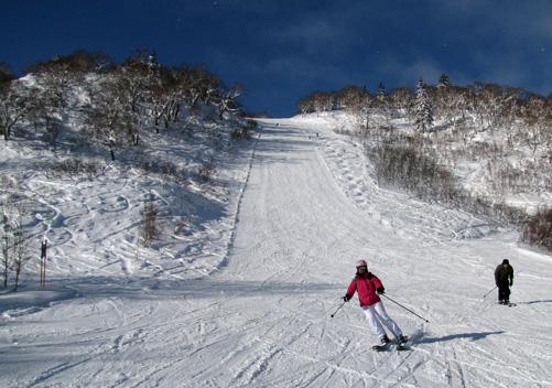 11. Sapporo Kokusai