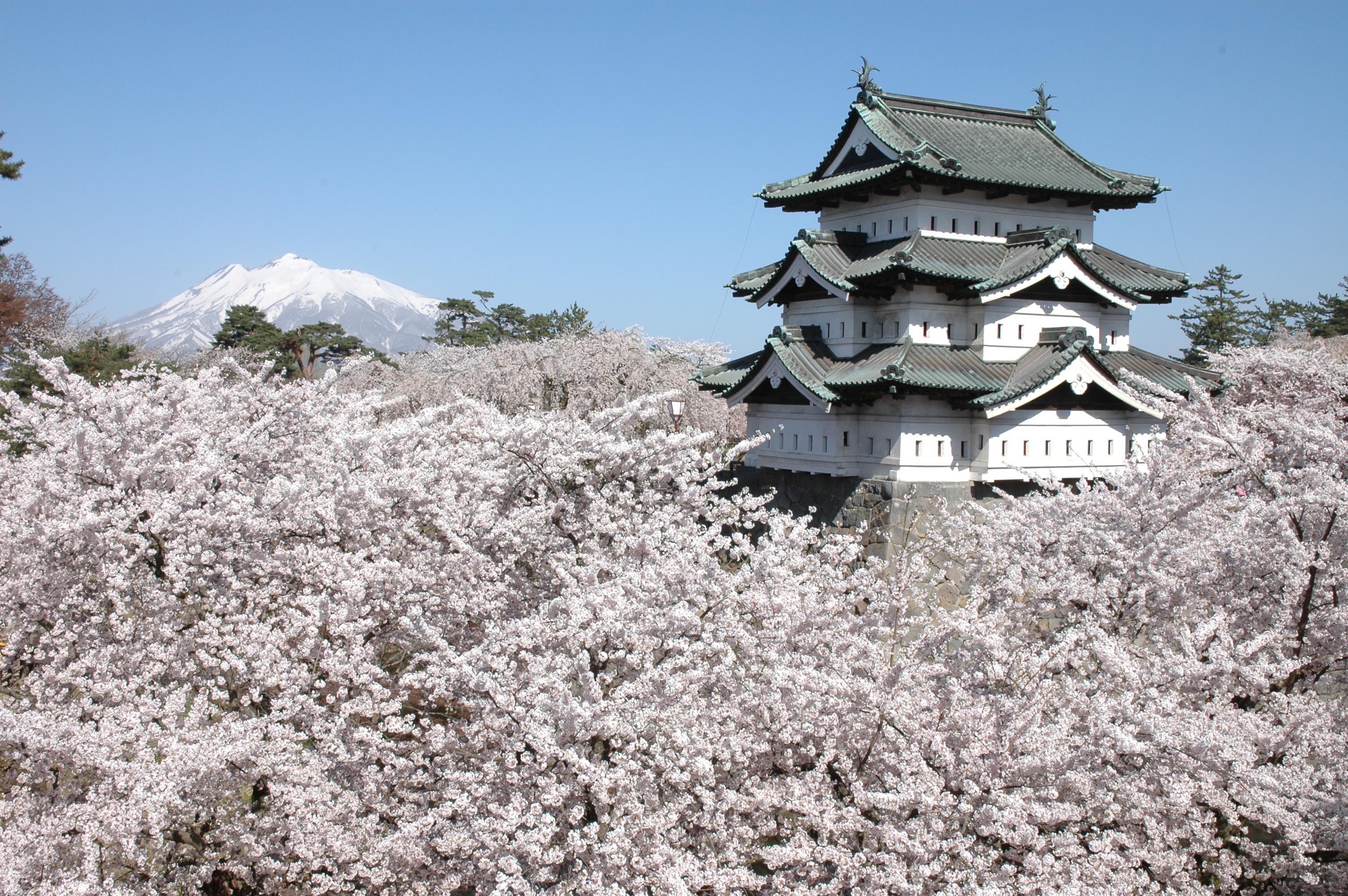 Hirosaki Castle Renovation Hirosaki Castle Aomori