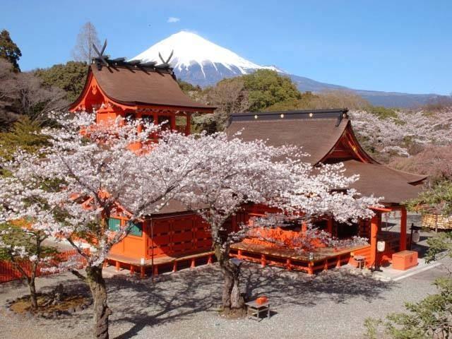11. 浅間神社