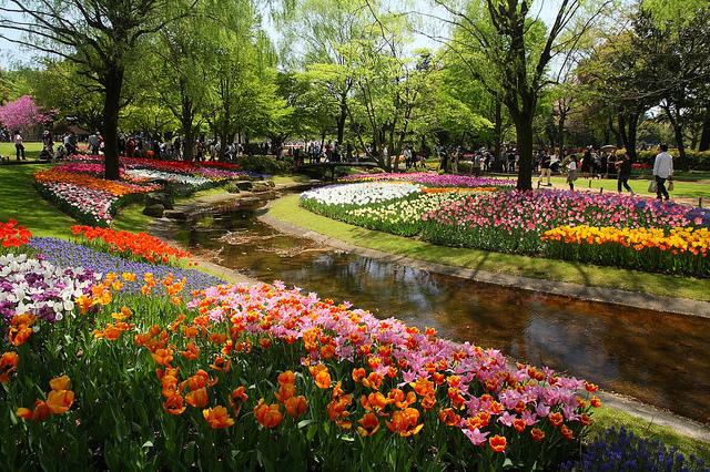 16 Must See Flower Gardens Around Japan Tsunagu Japan