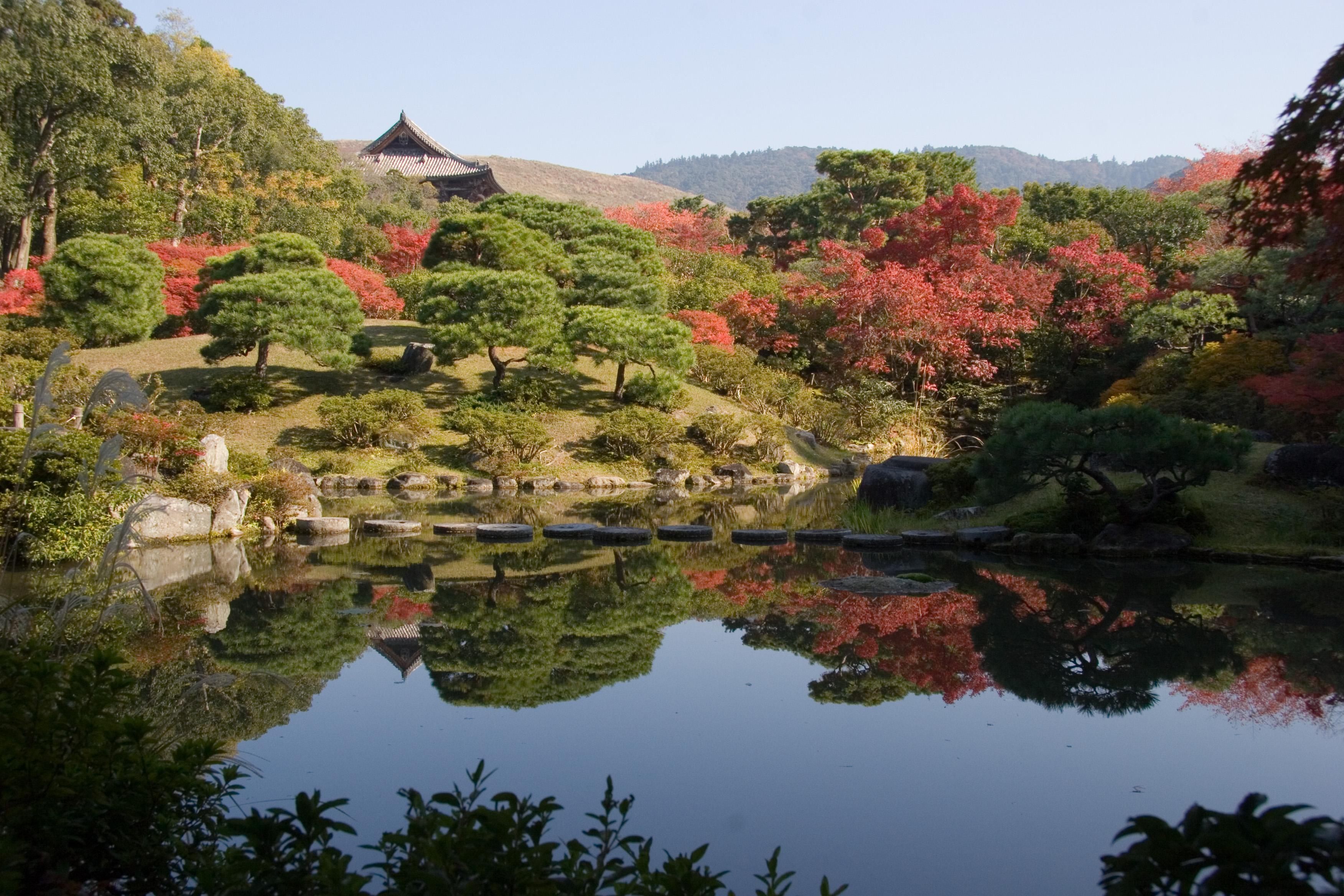 日本最古老城市ー奈良自由行精选50件推荐行程 | tsunagu Japan