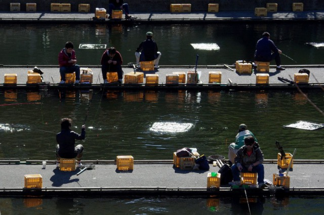 s_ichigaya_fishing_pond-1024x681
