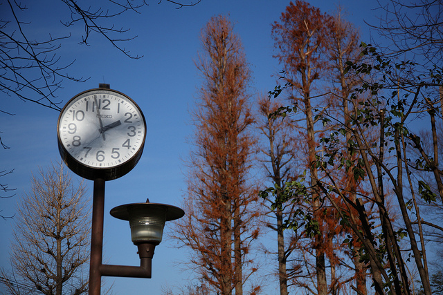 4 A clock telling time 14.00 with trees in the background