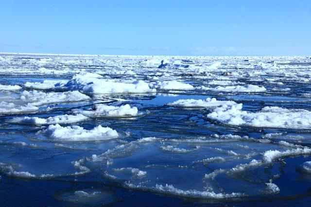 15 Cara Terbaik Menikmati Musim Dingin Di Hokkaido Tsunagu Japan